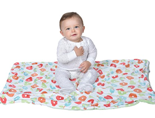 Toddler Blanket, Very Hungry Caterpillar Baby Blanket, Plush, Soft, Large Crib Blanket, Kids Blanket, Double Layer Blanket, Stroller Cover, 30'' x 40'' ,Green, Neutral