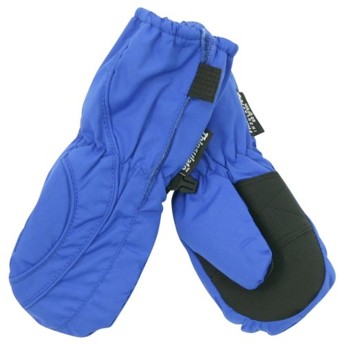Toddler Boy's (2 - 4) Long Thinsulate Lined / Wateproof Ski Mittens - Royal